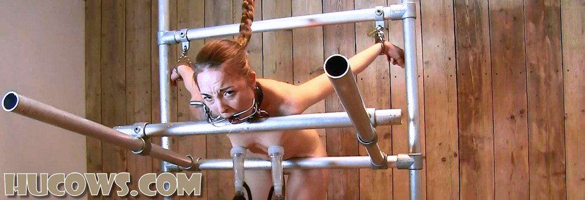 Pling – large nipples milked