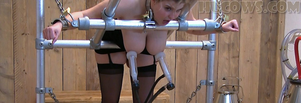 Alais – high speed milking