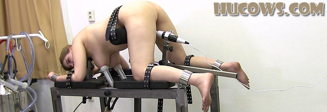 Alais - extra stimulation