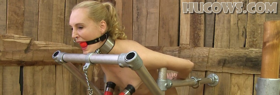 Ariel Anderssen - milked after clamps
