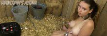 Vina – back in the barn!