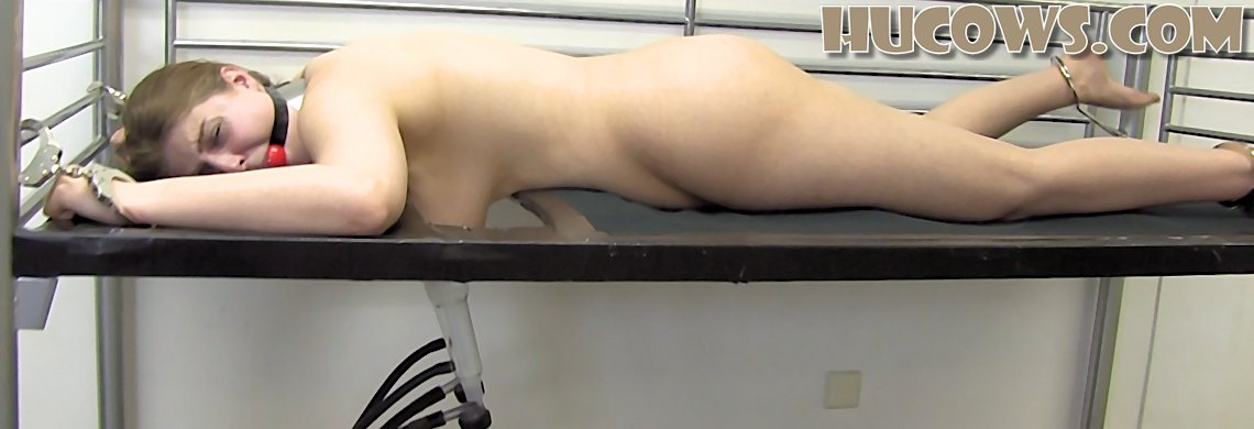 Alais – gagged on the milking bed