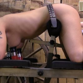 Darina – double stimulation