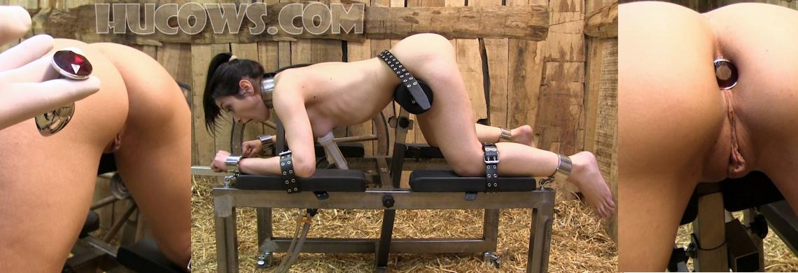 Valentina Bianco – jewel butt plug