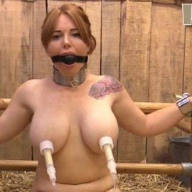 Lisa – nipple training