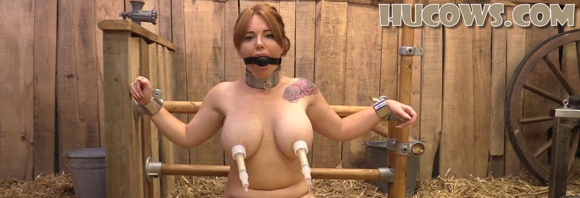 Lisa – nipple training