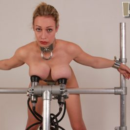 Chessie Kay – the cow milker test