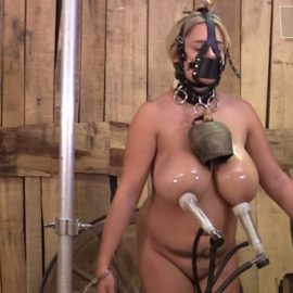 Katie – milked standing up