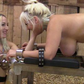 Liz milks Blondie